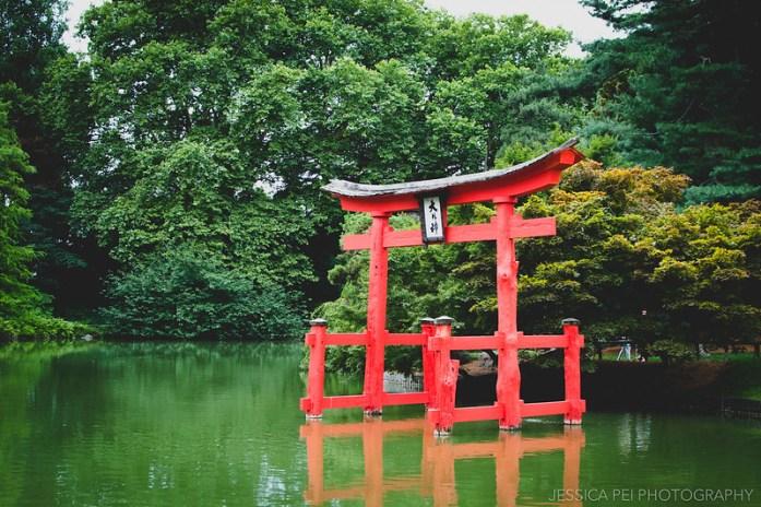 red japanese pond