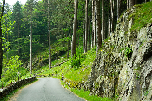 Cumbrian backroad 1