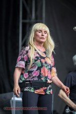 Photos | Blondie @ Pemberton Music Festival - July 18 2014