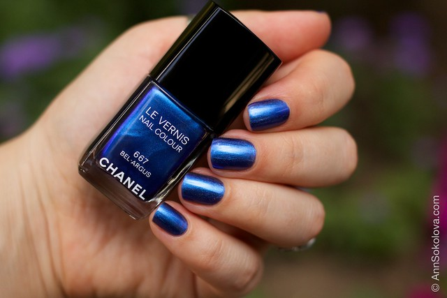 02 Chanel #667 Bel Argus