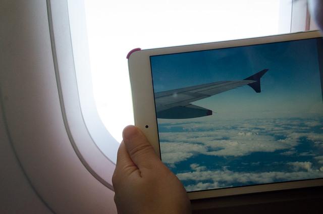 view through ipad mini