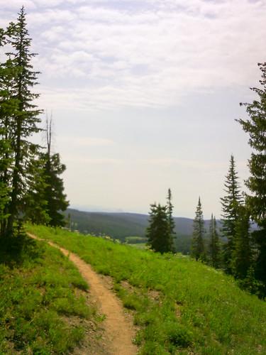 Mt. Werner Classic 50K