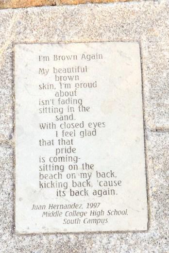 I'm Brown Again
