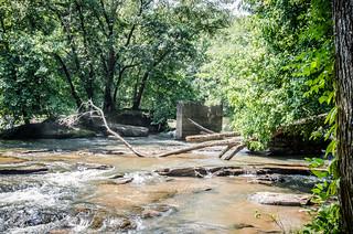 Musgrove Mill at Enoree-003