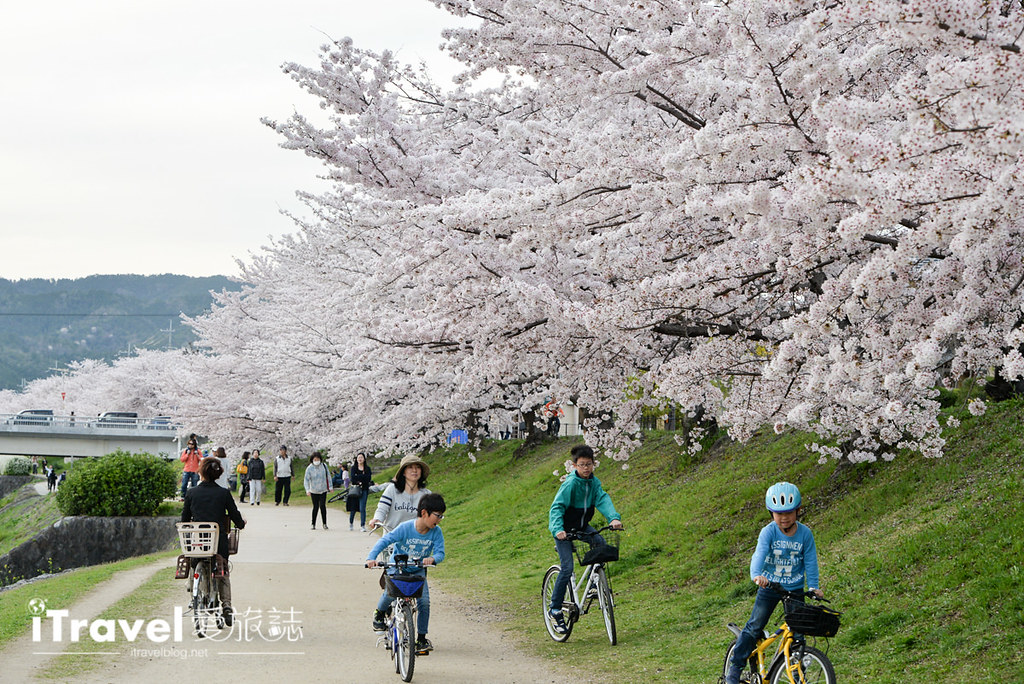 京都脚踏车出租 Rent a cycle EMUSICA (36)