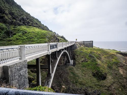 Cook's Chasm Bridge
