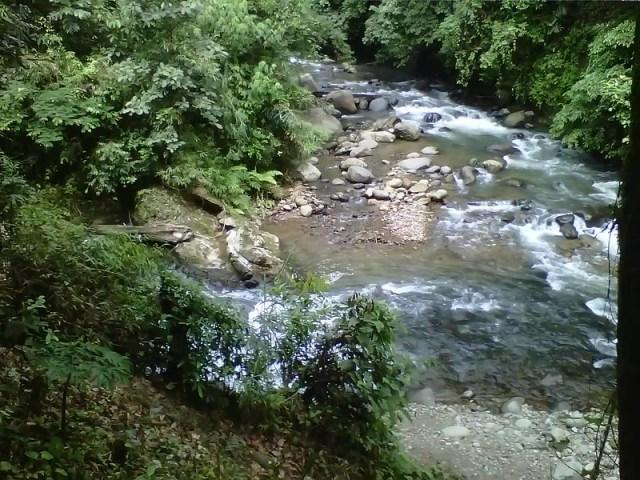 Aliran Sungai Air Terjun Sampuren Putih