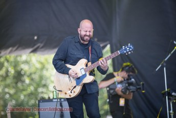 The Wildlife @ Squamish Valley Music Festival - August 9th 2014