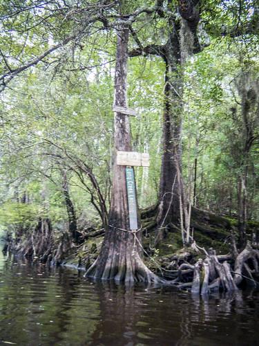 LCU Edisto Messervy to Long Creek-215