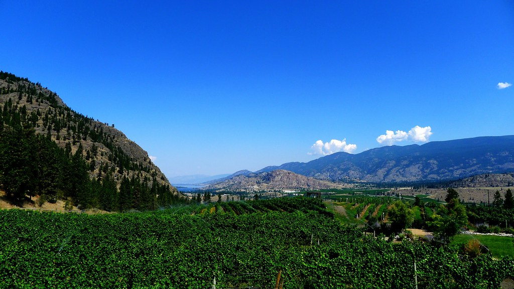 See Ya Later Ranch winery okanagan Osoyoos vineyard