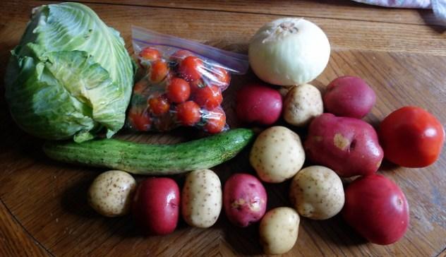 Homestead Creamery Vegetables Week 7