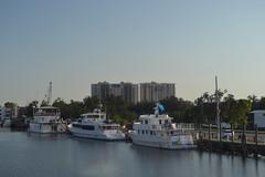 642 New Orleans Marina
