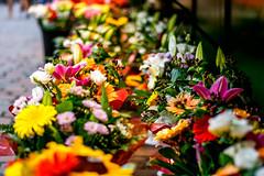 Blumen am Obstplatz von Bozen