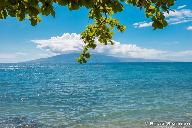 Maui_18_20080322