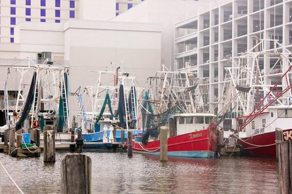 Gulf Coast - Shrimping-0191