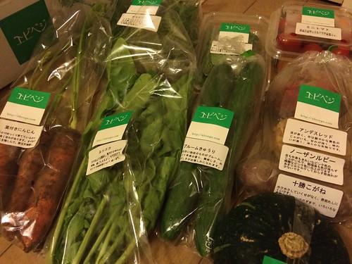 お土産でいただいた野菜たち@エビベジの会