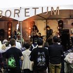 The Yips @ Arboretum Festival