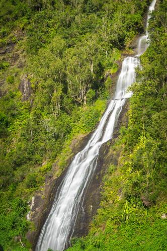 Voile de la mariée - Reunion Island