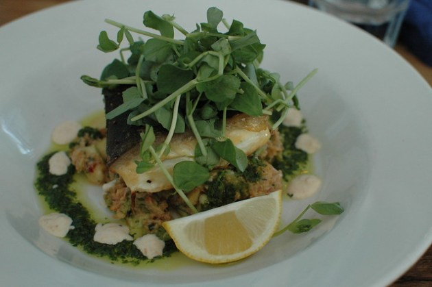 Cafe Fish - Halibut 02