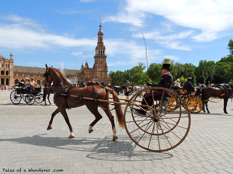 2014.05.02.147 - SEVILLA - Plaza de España - (XXIX Exhibición de Enganches 2014 - Desfile inaugural)