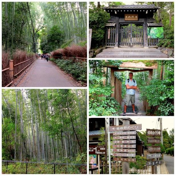 Bosque Bambu Arashiyama