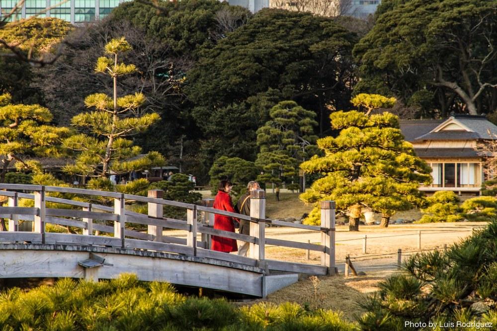 Hama-Rikyu Gardens-44