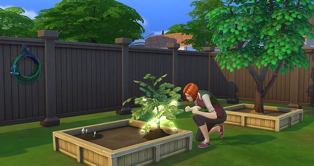 Guide: The Sims 4 Gardening Skill + Plant List (5/6)