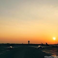 #sunrise #14/4 #brusselsairport @brusselsairport #airplane #tarmac #airplanes #airport #brussel #brussels #wanderlust #travel #travelgram #guardiantravelsnaps #vsco #vscocam #citytrip #landscape #spring #blue #sky #belgium #igbelgium #tower #light #sunlig