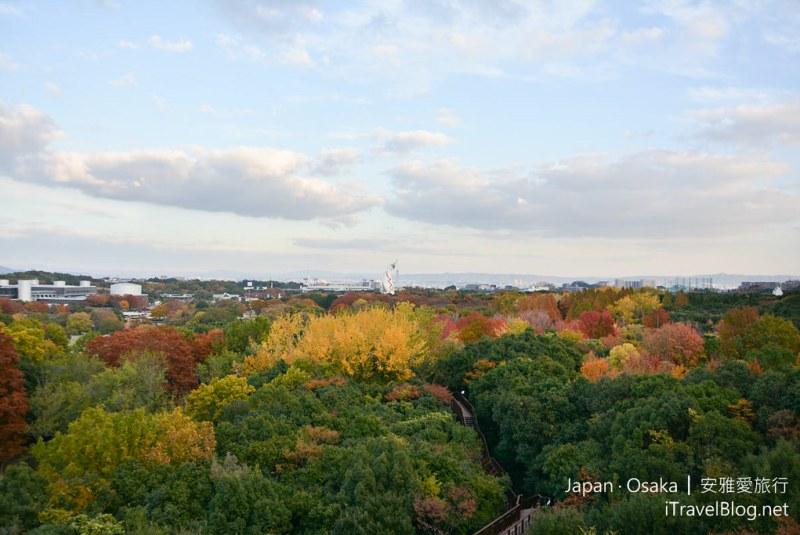 大阪赏枫 万博纪念公园 红叶庭园 35