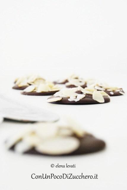 Chocolate & Almond Disks 3