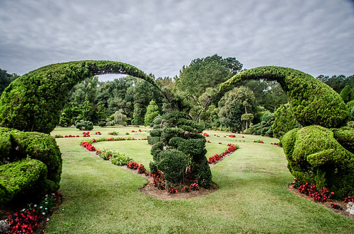 Pearle Fryer Topiary Garden