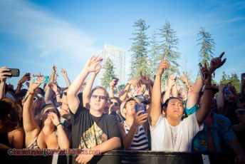 Crowd @ Fvded in The Park - July 4th 2015