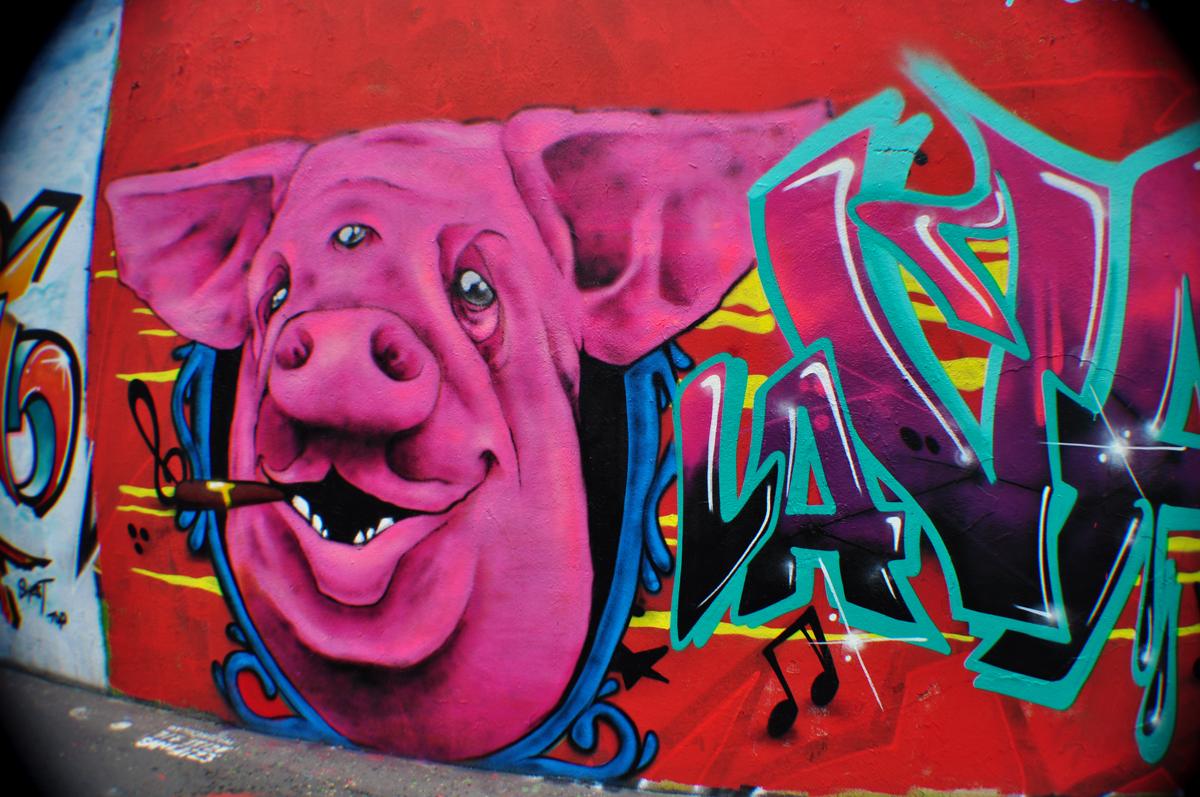 La Valls des Porcs (2)