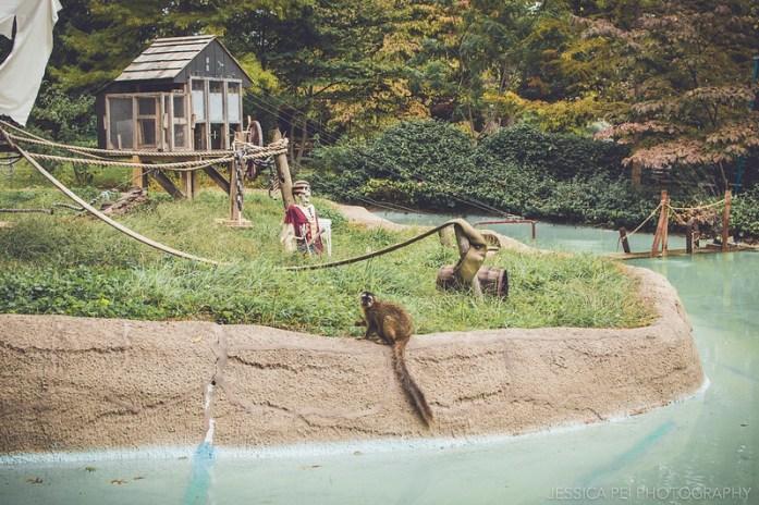 lemur grant's farm animal