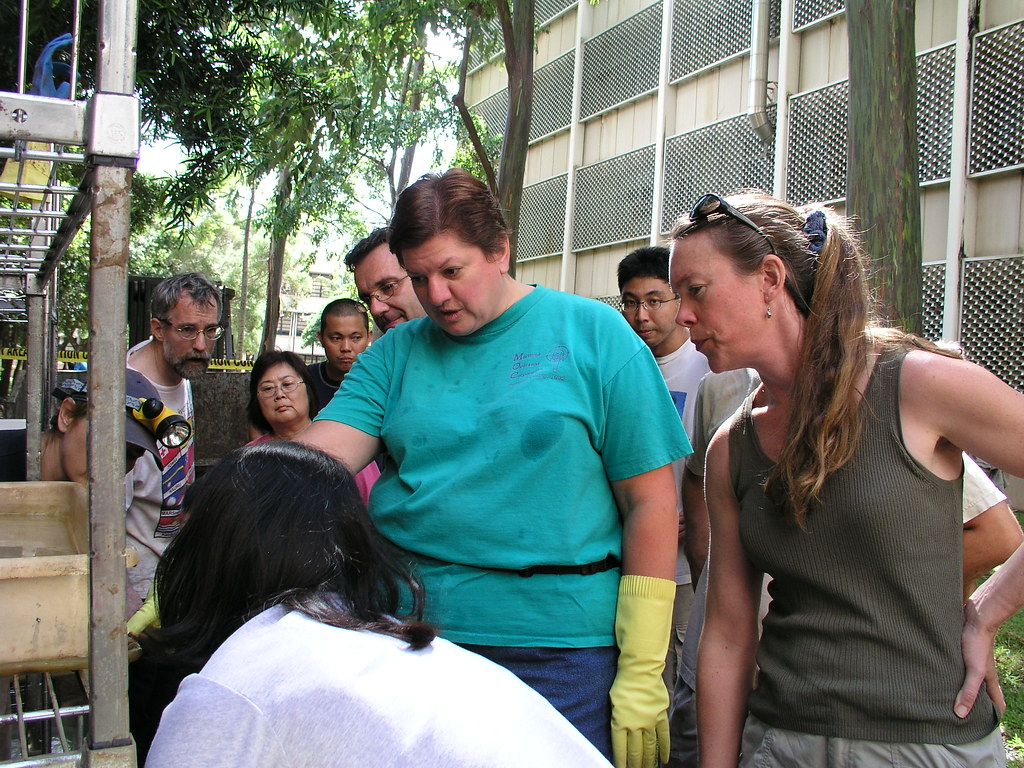<p>The recovery effort began immediately—volunteers from the campus and community joined library staff and students to retrieve and clean damaged items.</p>