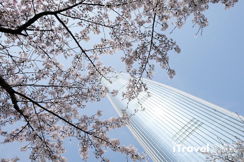 《首尔赏樱景点》石村湖:乐天世界塔旁环湖樱花绽放,2017年首尔新地标赏樱首选