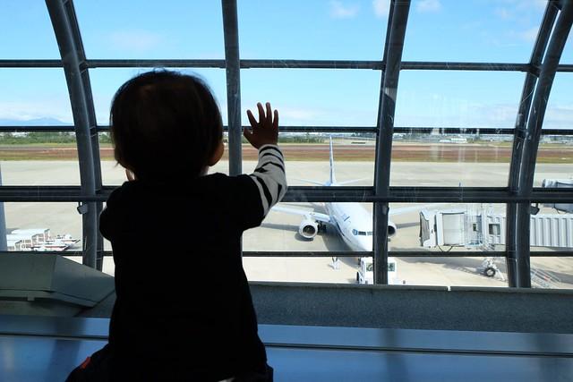飛行機を眺めるともくん