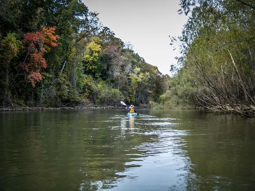 Savannah River from Stokes Bluff with LCU Nov 7, 2014, 4-18 PM Nov 8, 2014, 10-057