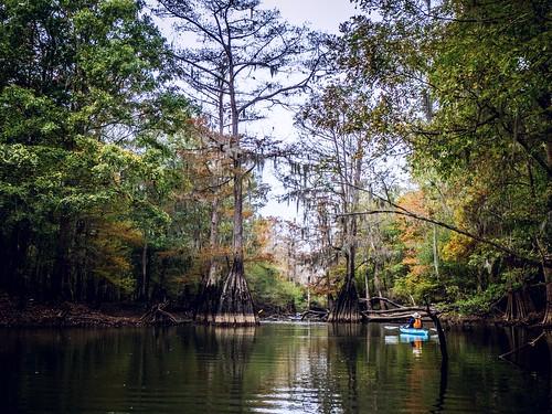 Savannah River from Stokes Bluff with LCU Nov 7, 2014, 4-18 PM Nov 8, 2014, 11-010