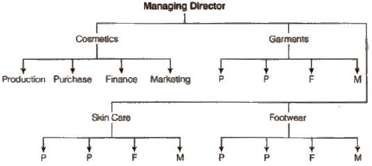 ncert class 12 Chapter 5-Organising