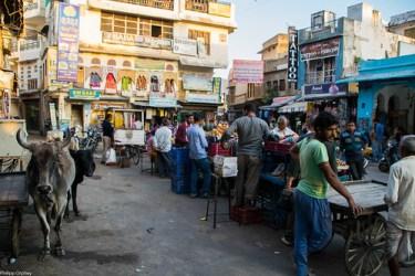 lust-4-life travel blog pushkar india