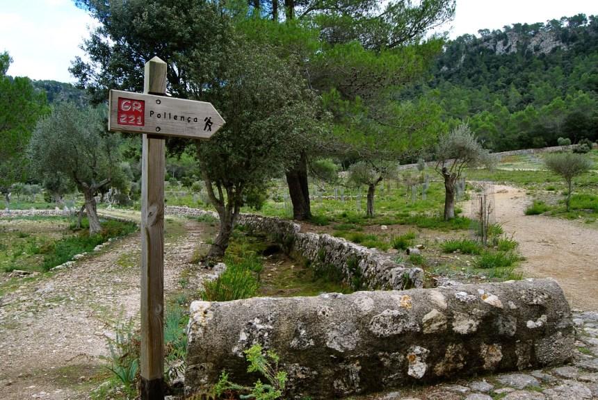 Excursión al Puig Tomir