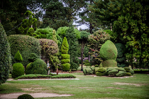 Pearle Fryer Topiary Garden-013