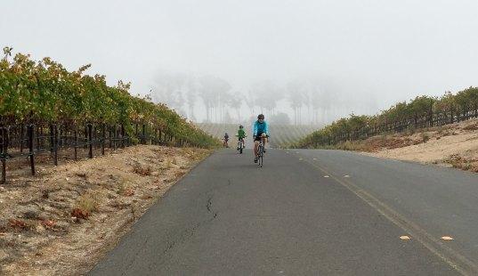2014-10-19 Tour de Vine