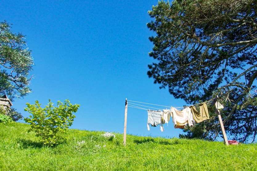Hobbits need clean clothes, too. Do you recognize those trousers?