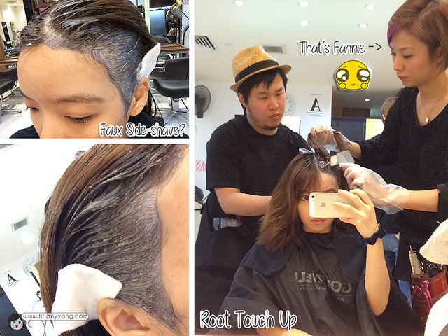 shunji root touch up