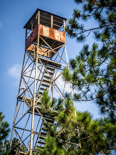 Woodville Fire Tower