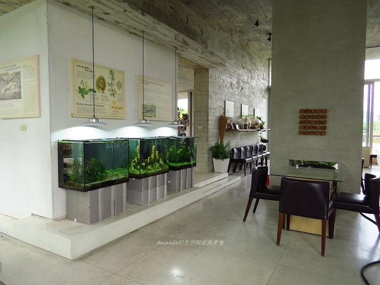 勝洋水草休閒農場 (15)