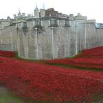 London, England November 2014