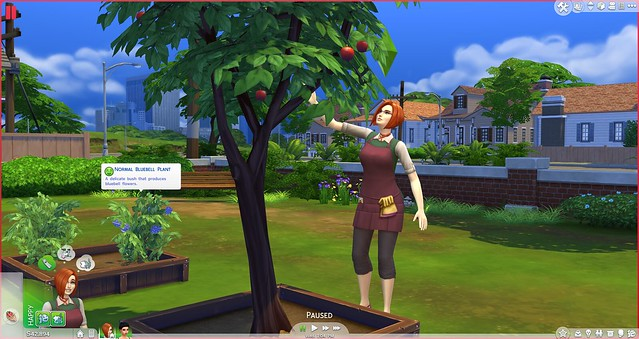 Guide: The Sims 4 Gardening Skill + Plant List (3/6)